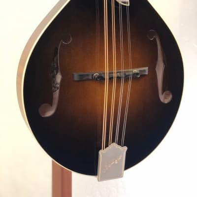 Collings MT Deluxe w/Fleur-De-Lis & James Tailpiece