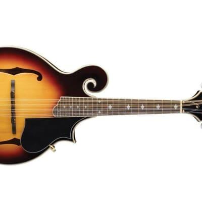 Washburn Florentine F-Style Mandolin w/ Hardshell Case - Tobacco Sunburst for sale