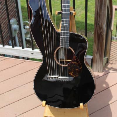 McCollum Harp Guitar 2001 for sale