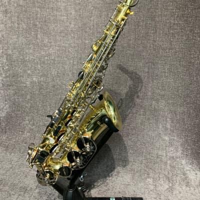 Olds NAS62MN Alto Sax