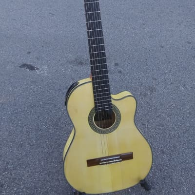 Giannini GWNFLE Classical Nylon Electric Guitar Handmade in Braz for sale