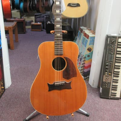 Holt U.S.A. Acoustic Guitar Used for sale