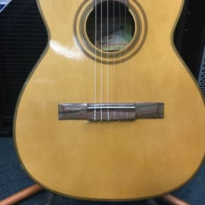Giannini  Model 6 Made in Brazil for sale