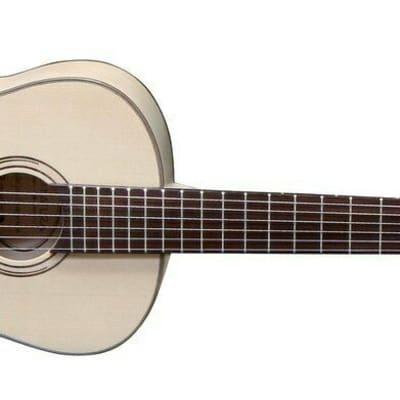 Gewa Konzertgitarre Pro Natura 43497 Silver for sale
