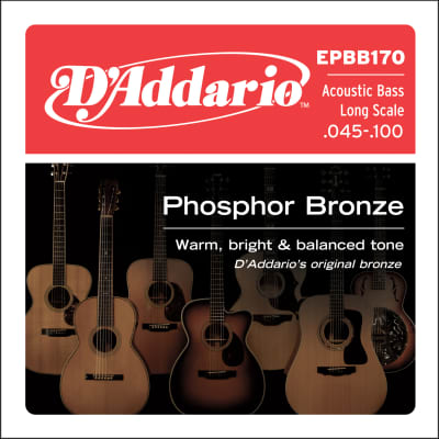 D'Addario Acoustic Bass Guitar Long Scale 4 String Set Phosphor Bronze  45-100