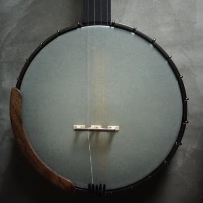 Ode Magician 5-String Openback Banjo for sale