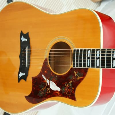 Gibson Dove 1973 Natural for sale