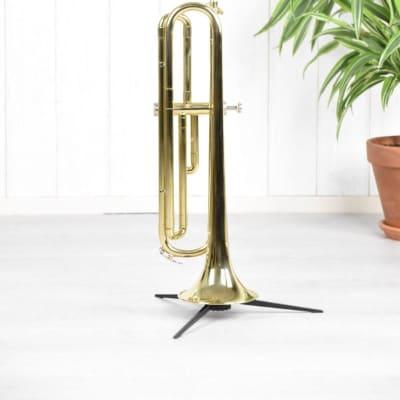 Main Eb Db trompet gelakt