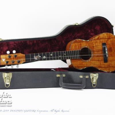 Pegasus Guitars Tenor 5-String  2007 for sale