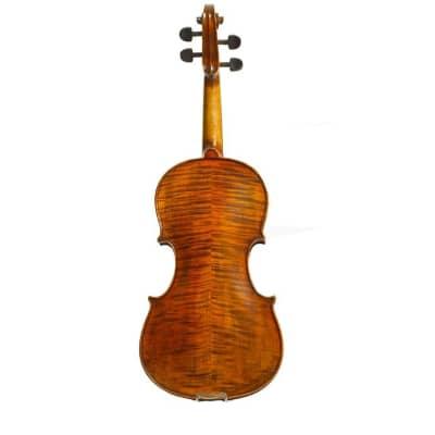 Stentor Arcadia Violin 4/4 Full Size