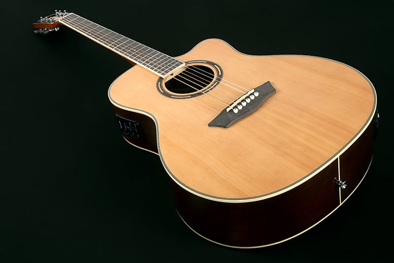 730c086c02 ... Acoustic-Electric Guitar w/Hardshell Case. By Washburn; Listed by The  Gator Tone; Condition: Brand New; 109 Views