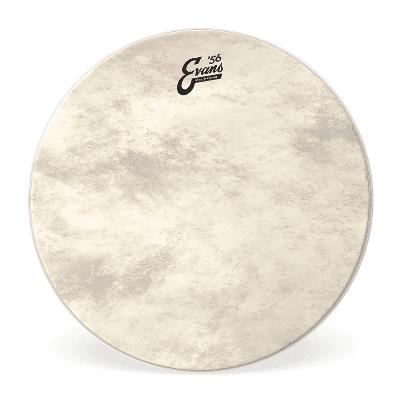 """Evans BD16CT Calftone Bass Drum Head - 16"""""""