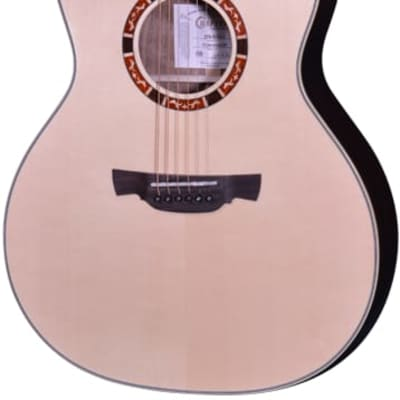Crafter Professional STG G-20CE for sale