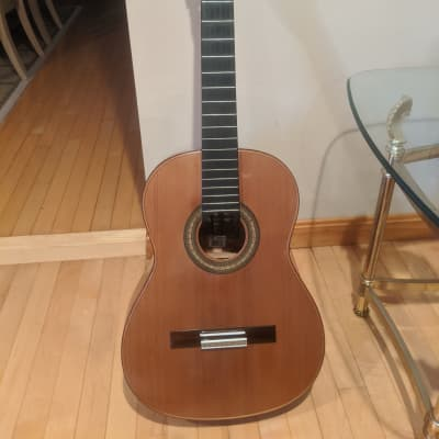 Giannini GWNC4 Classical Guitar Special Edition for sale