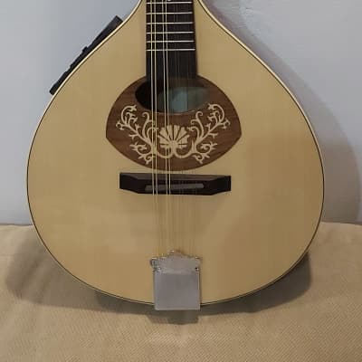 Portuguese Mandolin - Electric- New + Bag + Extra Chords for sale