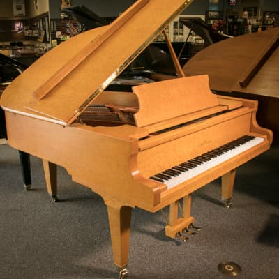"Schimmel Konzert Series 5'7"" Exotic Birdseye Maple Parlor Grand Piano  w/Bench - Anno 2002"