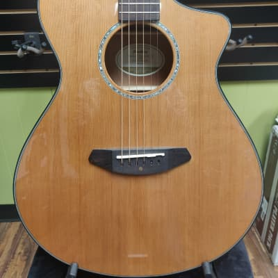 Breedlove Pursuit Concert CE  Natural Gloss With Gigbag for sale