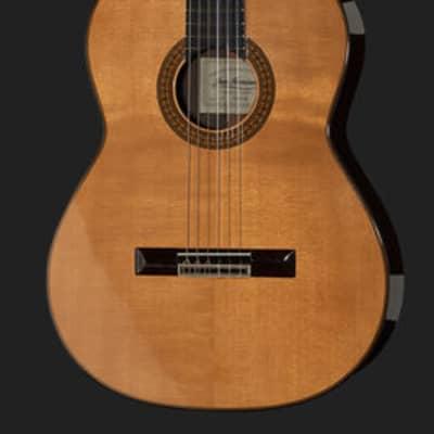 Juan Hernandez Profesor Spruce Spanish Classical Guitar for sale