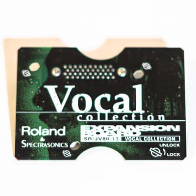 Roland SR-JV80-13 Vocal Collection Expansion Board for Roland JV80