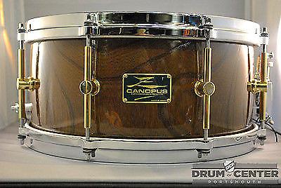 canopus zelkova snare drum 14x6 5 drum center of portsmouth reverb. Black Bedroom Furniture Sets. Home Design Ideas
