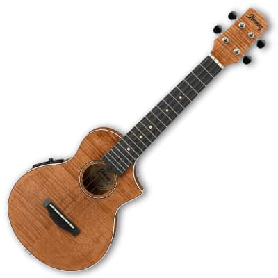 Ibanez UEW15E Concert Acoustic Electric Ukulele - Open Pore Natural for sale