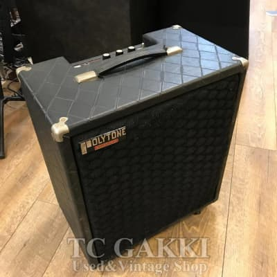 Polytone Mini Brute III for sale