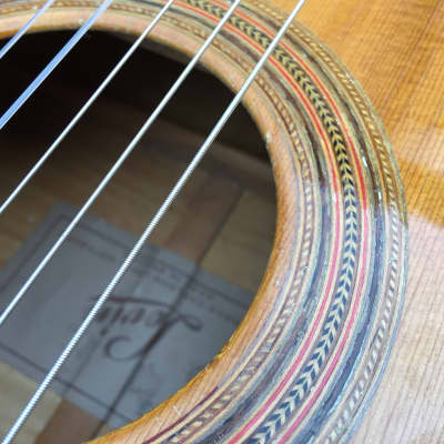 Levin 113 Grand Concert 1963s Natural for sale