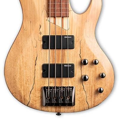 ESP LB204MFLNS Fretless Bass Guitar - Natural Satin