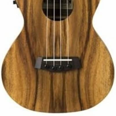 Islander AC-4-EQ Electro-Acoustic Concert Ukulele for sale