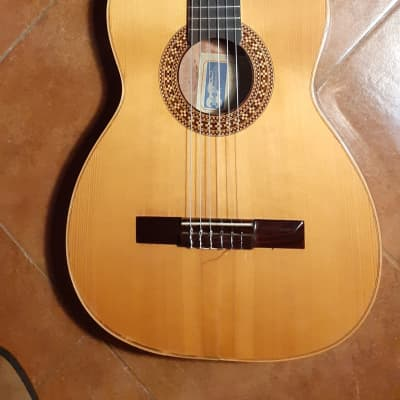 carmelo catania 3 / NSP 1969 vintage Italian Style guitar in very good conditions serial 123921 for sale