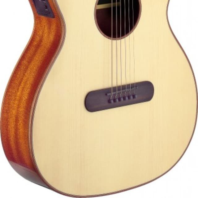 James Neligan LIS-MJCFI, Lismore Series Acoustic-Electric Mini-Jumbo Guitar w/ Solid Spruce Top image
