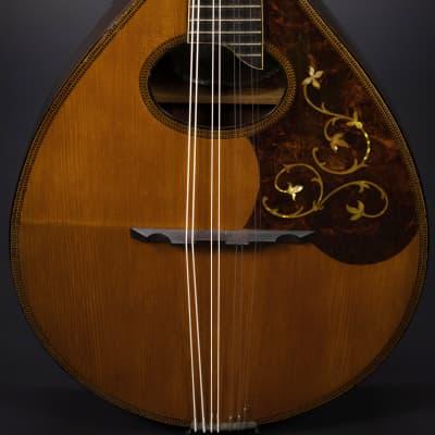 Harmony Perfacktone Mandolin 1920s Natural for sale