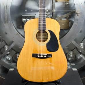 Gremlin Acoustic Guitar for sale