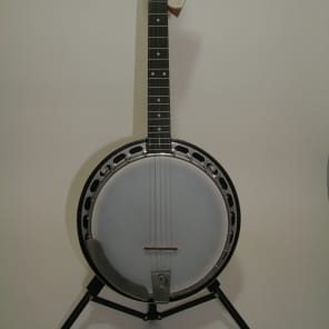Recording King RK-R15 Madison Rambler Resonator Banjo