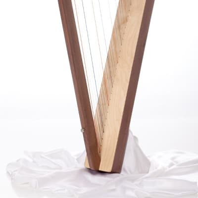 Special Edition Fullsicle Harp w/ Book & DVD - Walnut