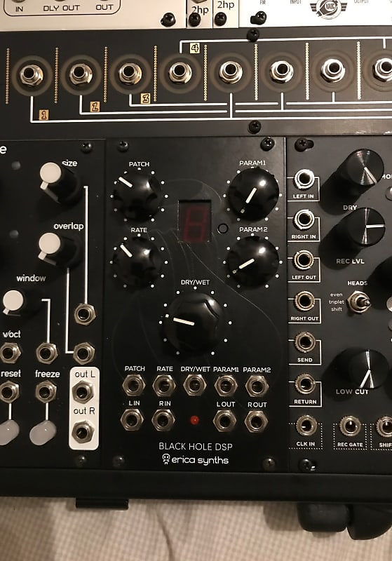 Erica Synths Black Hole DSP Module AND FX expansion ROM chip