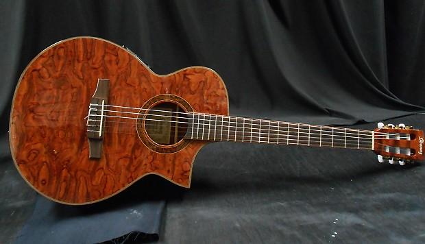Ibanez Exotic Wood Series Nylon String Guitar W Tkl Gig Bag