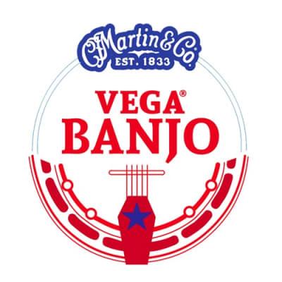Martin V740  Vega Medium 5-String Banjo Strings