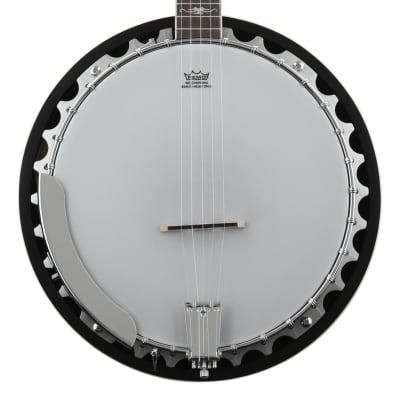 Washburn Americana B10 5-string Resonator Banjo (B10d8) for sale