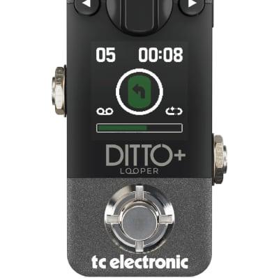 Tc Electronic Ditto+ Plus Looper Effetto Looper Next Gen A Pedale Per Chitarra Con Display E Usb for sale