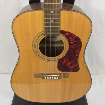 Washburn DK20T Acoustic Guitar for sale