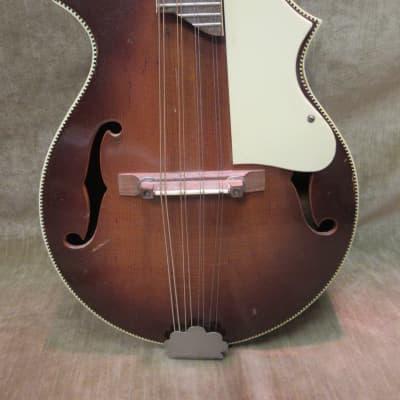1950's Kay KM 70 8 String Mandolin Sunburst Great Shape Loud ! Pro Set Up Free US Shipping! for sale