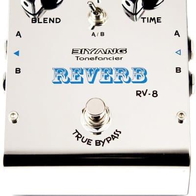 Biyang Tonefancier RV-8 Reverb