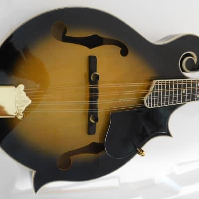 Oscar Schmidt OM40--Style F-Hole Mandolin with gig bag for sale