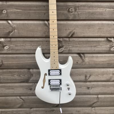 SX Electric Guitar Thinline Double Cutaway - White for sale
