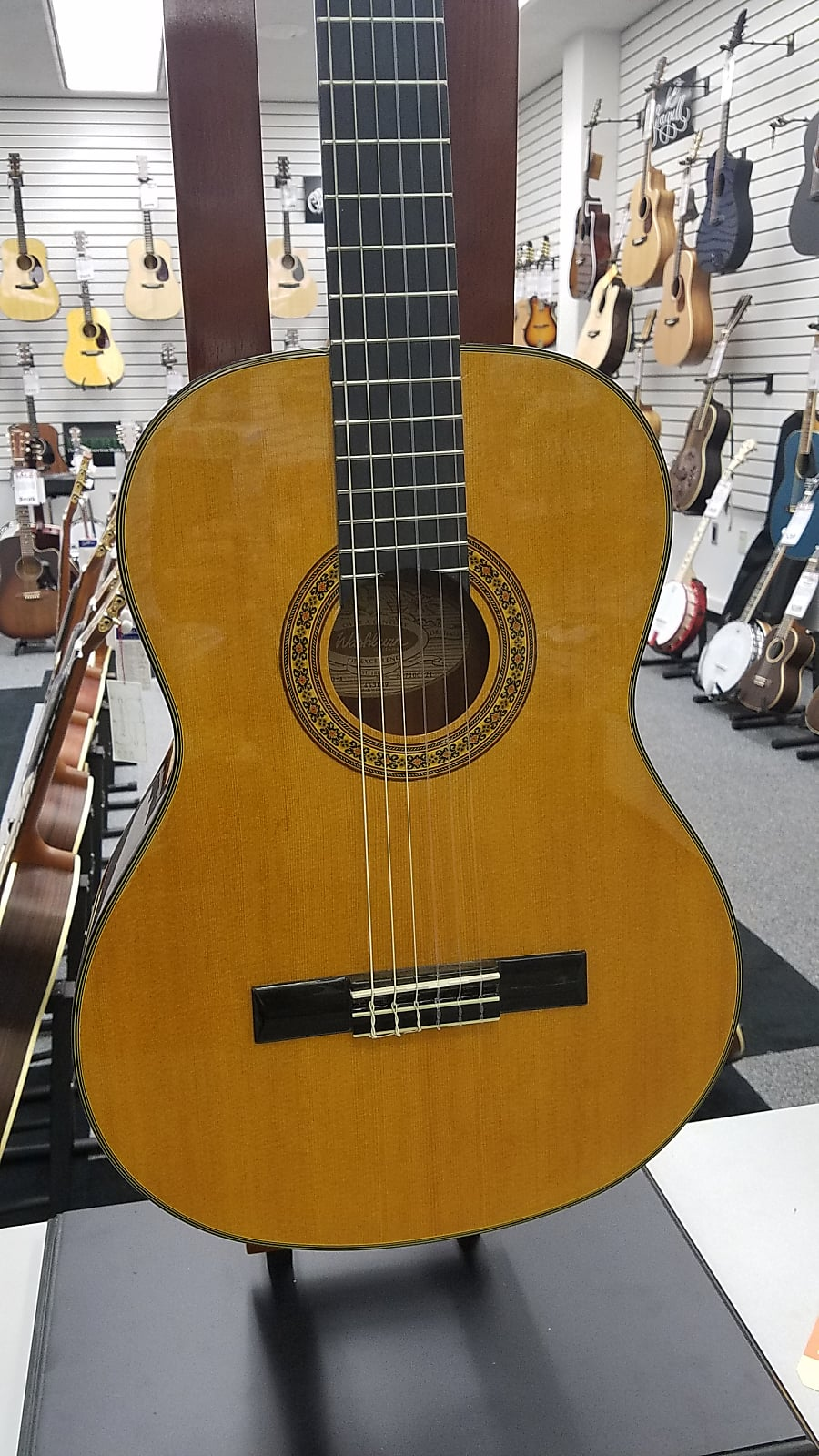 Washburn C40-A Acoustic Guitar