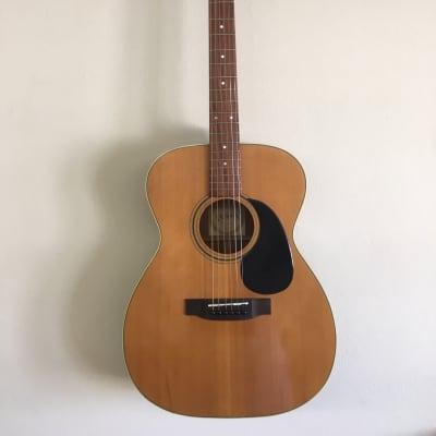 Pan, MIJ, folk acoustic guitar for sale