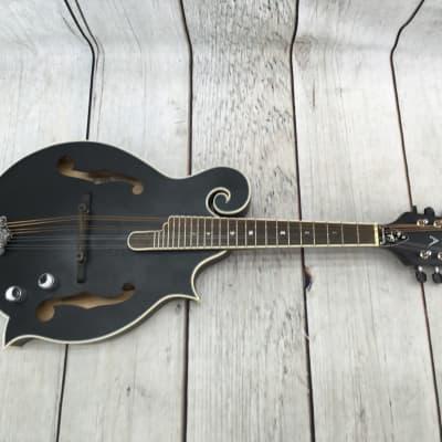 Luna BGM Moon F Moonbird F-Style Mandolin with Electronics for sale