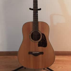 Ibanez AVD1NT Artwood Series 12-Fret Dreadnought Acoustic Guitar Natural
