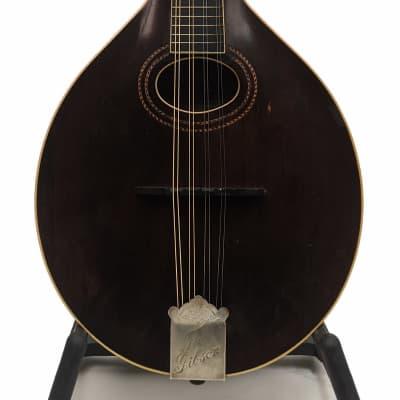 Gibson A-2 Mandolin 1918 Sheraton Brown